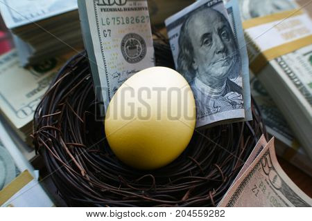 Retirement Nest Egg With Money & Golden Egg