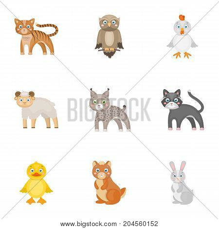 Farm, zoo, ecology and other  icon in cartoon style.Marsupial, Australia, nature icons in set collection.