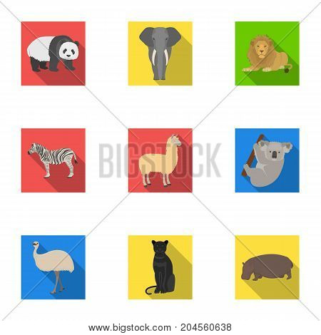 Ostrich emu, crocodile, giraffe, tiger, penguin and other wild animals. Artiodactyla, mammalian predators and animals set collection icons in flat style vector symbol stock illustration .