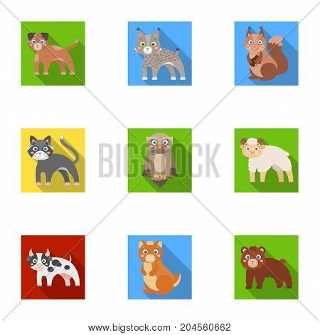 Farm, zoo, ecology and other  icon in flat style.Marsupial, Australia, nature icons in set collection.