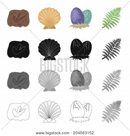 Petrified trail, prehistoric sea shell, dinosaur eggs, fern branch. Dinosaurs and prehistoric set collection icons in cartoon black monochrome outline style vector symbol stock illustration .