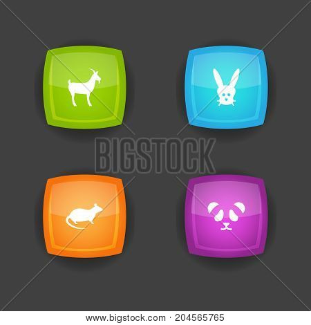 Collection Of Livestock, Bunny, Bear And Other Elements.  Set Of 4 Zoology Icons Set.