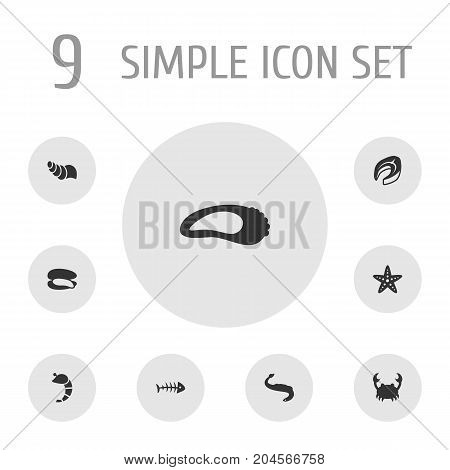 Collection Of Lobster, Clam, Sink And Other Elements.  Set Of 9 Seafood Icons Set.