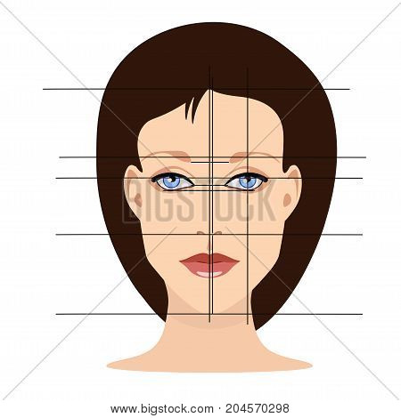 Vector face with lines showing facial proportions for cosmetology and drawing study in primitive style isolated