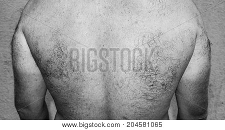 Male hairy back. Close-up. Black and white photo.