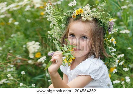 Little Girl Sniffs Wildflowers On A Meadow,