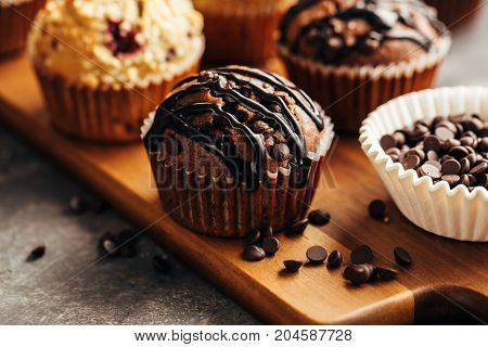 Chocolate Muffin with Chocolate Chips. Close up.
