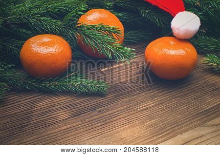 Tangerines christmas tree branches and Santa Claus hat on burnt wooden surface background with copy space. Christmas background.