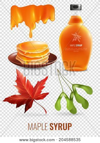 Maple syrup isolated elements set on transparent background with red maple leaf pancakes and branded glass bottle vector illustration