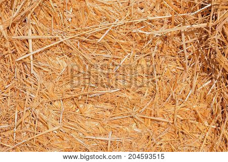 Background The Natural Texture Of Dry Straw