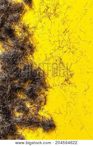 Beard hair clippings on a yellow floor from a barbers or hairdressers studio.
