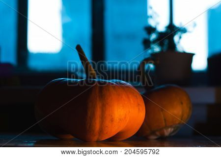 The two pumpkins on the table at night, lit by the moon
