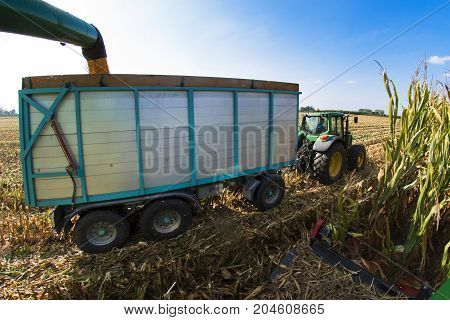 View From Combine To Trailer And Tractor