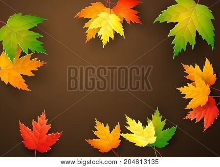 Autumn maple leaves on brown background. Vector illustration.