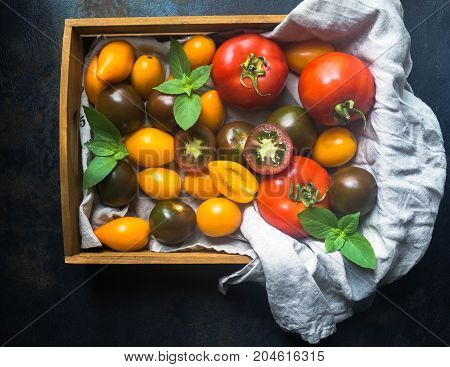 Colorful tomatoes of different sizes and kinds and green twigs of basil in wooden tray on dark background. Top view
