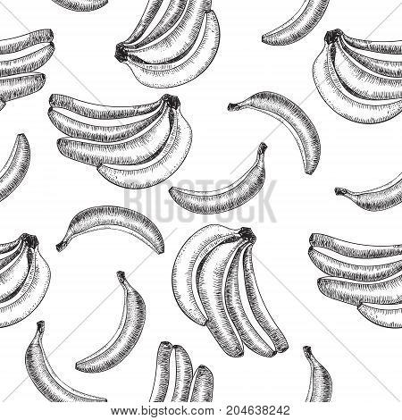 Seamless pattern.bananas of vector sketches.Detailed citrus drawing.Vintage sketch style illustration.