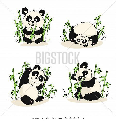 A Set Of Illustrations With A Panda Cub. Panda Sitting, Eating, Playing. Hand Drawing.