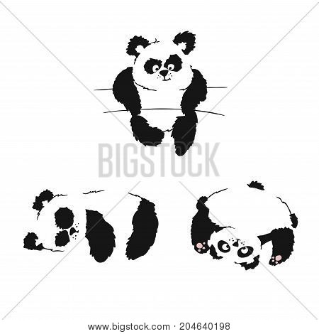 Set Of Silhouettes Of Sitting Panda Cubs. Panda Slipping And Playing. Hand Drawing.