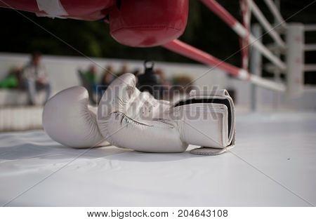 White boxing gloves on the ring flooring.