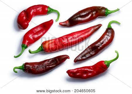 Red Hatch Chile Peppers, Paths, Top View