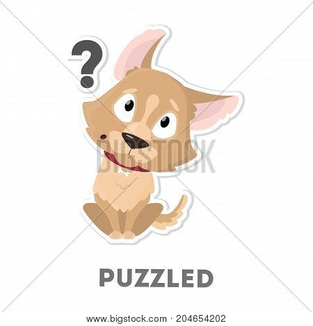 Isolated puzzled dog with question marks on white background.