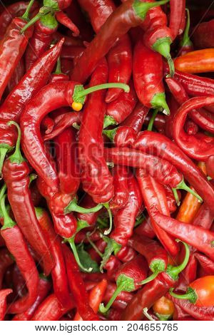 Red peppers background texture of hot red chili, seasoning paprika, fiery red hot in the kitchen a dish of red pepper for sale