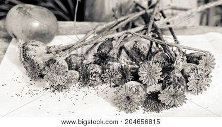 Poppy seeds and boxes in black and white