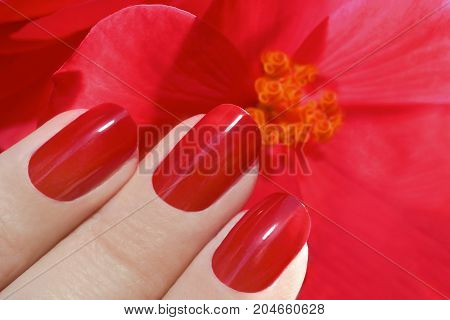 Juicy fashion bright red manicure with a flower in tone nails closeup.