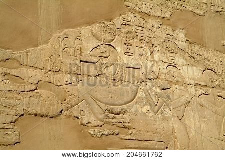Ancient Bas-relief on the wall - God with sheep head, without people, Thebes, UNESCO World Heritage Site, Egypt, North Africa, Africa
