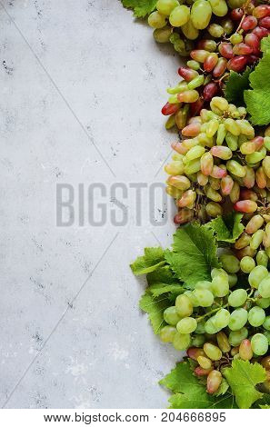 fruity layout of grapes on a gentle blue background