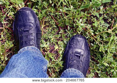 black leather shoes on their feet stand on green vegetation