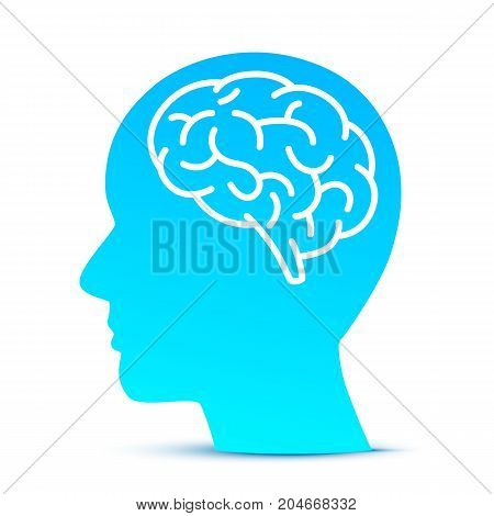 Silhouette head with the brain on the blue background. Vector illustration