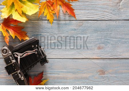 Autumn background. Colorful maple leaves and vintage camera on gray rustic wood background with copy space. Photography concept