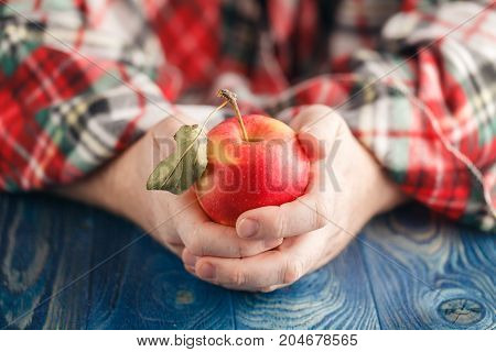 Winter Fruits Concept, Man In Warm Plaid Hold One Apple