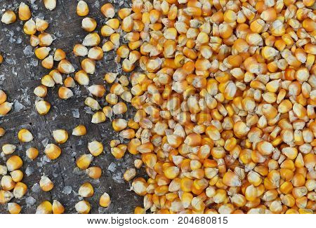 many dried corn seed in old winnowing basket for background