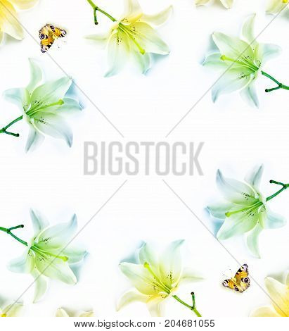 Flower lily isolated on white background. summer. Flat lay top view