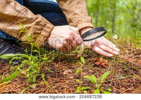 Photo of biologist with magnifying glass studying plants in woods during day