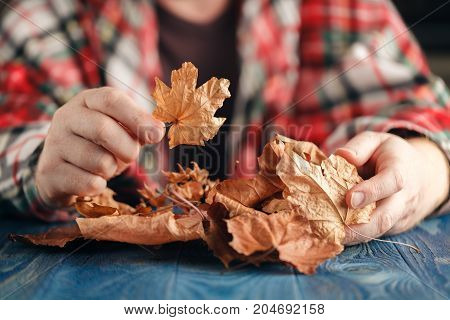 Male Hands Playing With Dry Leaves