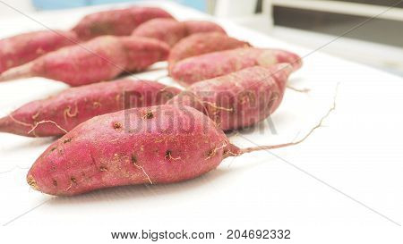 Purple sweet sotato raw of vegetable on white wood chair Macro photo zoom in focus select at foreground around are blur and has copy space.