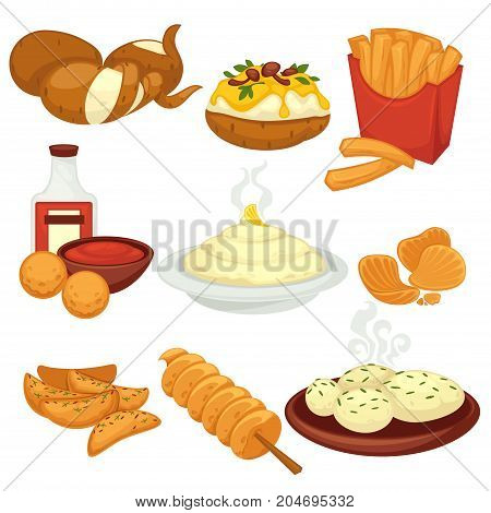Potato food dishes, snacks and cooked products. Fast food French fries, baked grill with filling, chips or patty and raw potato vegetable or mashed garnish. Vector flat isolated icons set