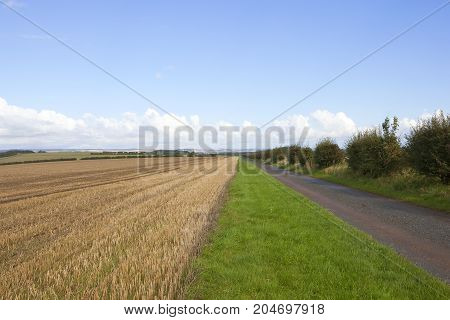 Farm Track And Wheat Stubble