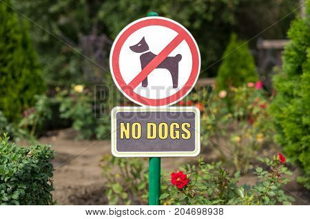 No Dogs Allowed On The Grass Area Sign