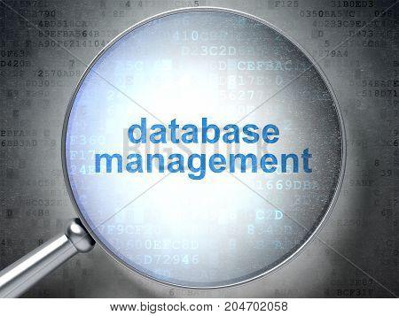 Software concept: magnifying optical glass with words Database Management on digital background, 3D rendering