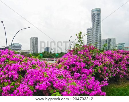 Landscape of the Singapore financial district. Image blurred in postproduction