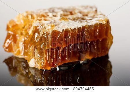 Honeycomb close up isolated on the white background .