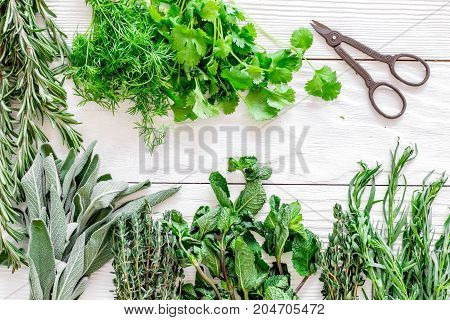 drying fresh herbs and greenery for spice home food on white wooden kitchen desk background top view