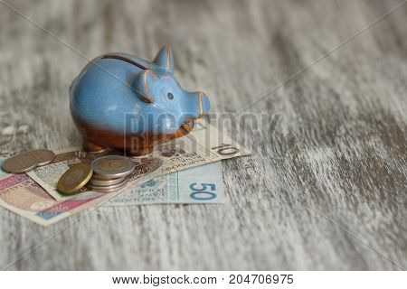 Polish Zloty And Piggy Bank On The Wooden Background