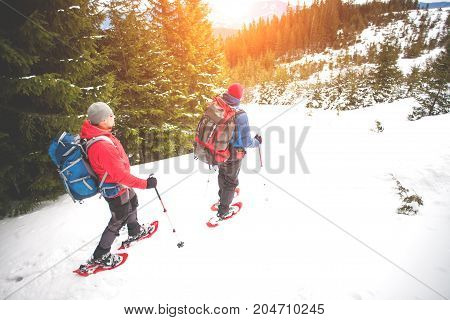 Two Climbers In The Mountains In Winter.