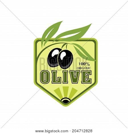 Olive icon with branch of black olives. Olive tree with green leaf and fresh fruit for natural organic food symbol or extra virgin oil bottle label, mediterranean cuisine themes design