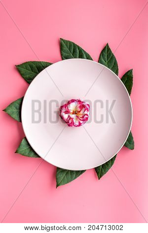Plate, tropical leaf and fruit on pink background top view.